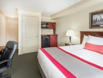 1 Queen Bed, Accessible Room, Non-Smoking