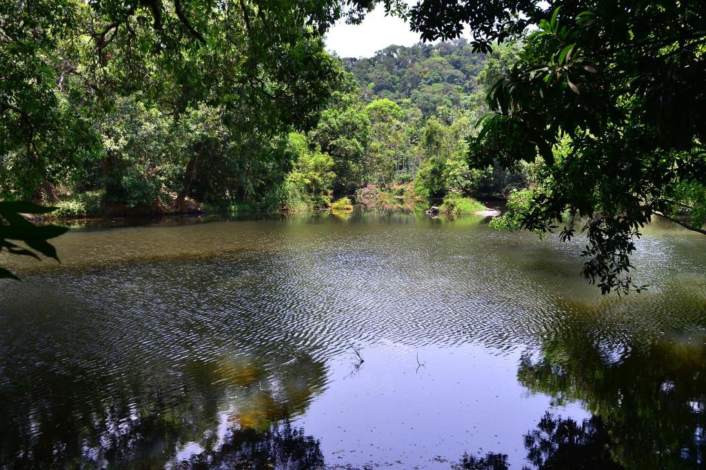 Exterior view River near coorg