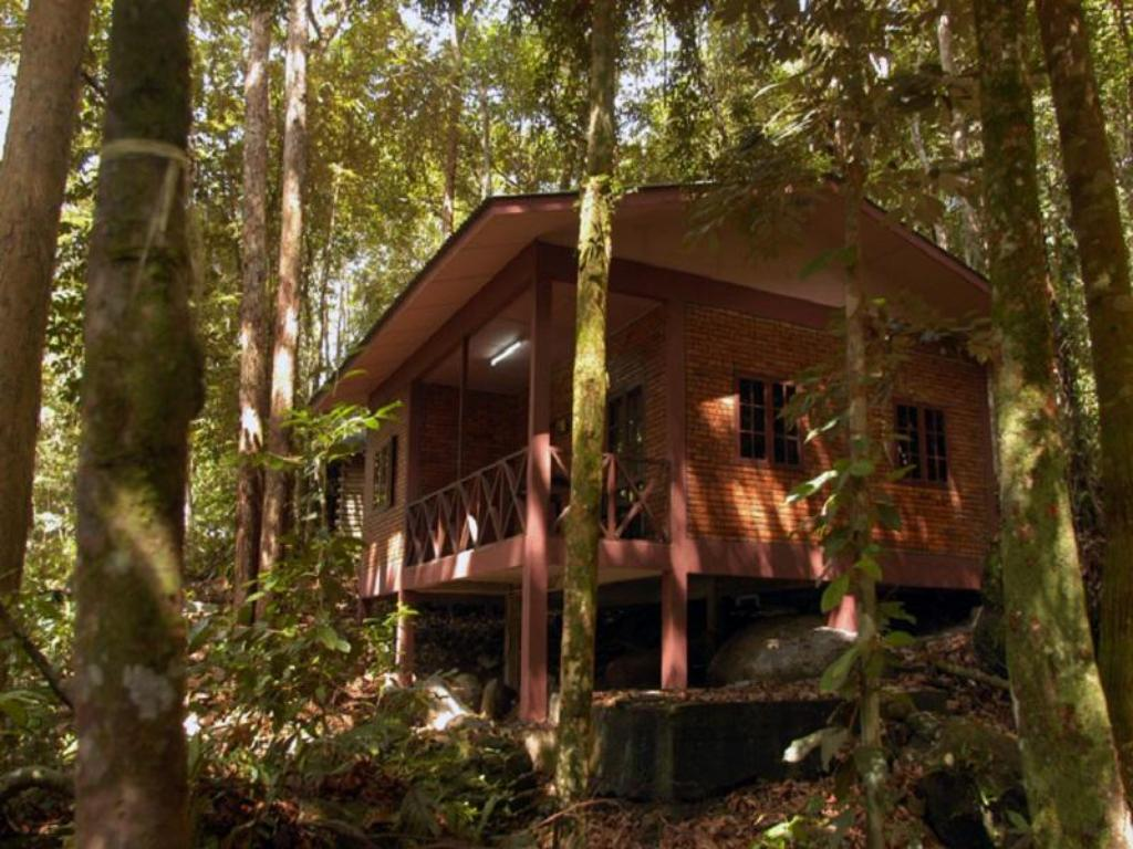 Namiņš Permai Rainforest Resort