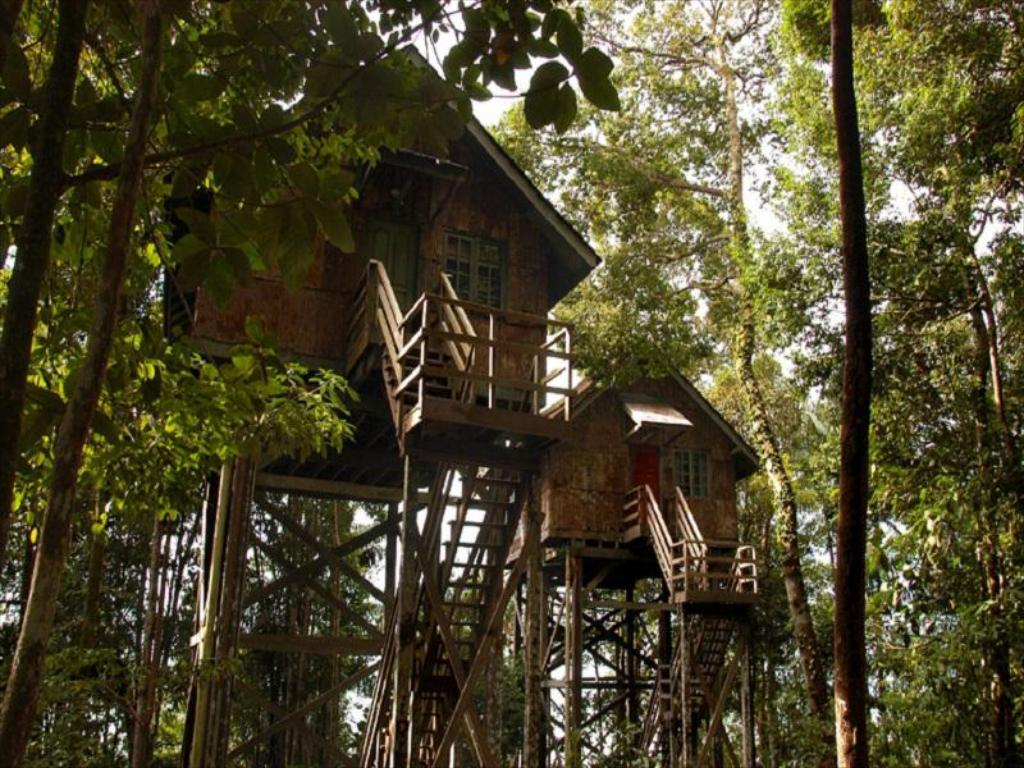 More about Permai Rainforest Resort