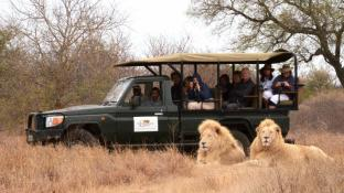 Elandela Private Game Reserve & Luxury Lodge