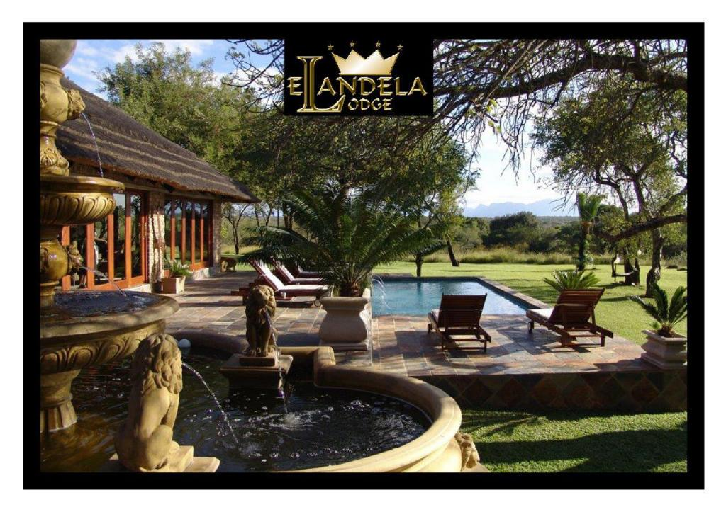 Swimming pool [outdoor] Elandela Private Game Reserve & Luxury Lodge