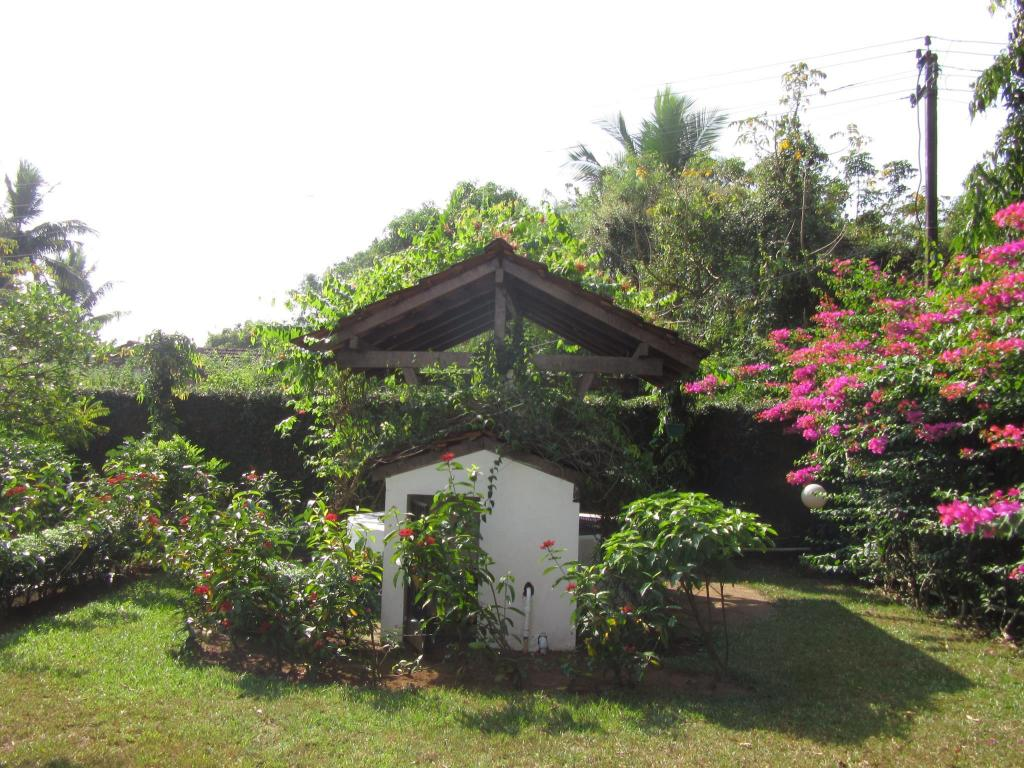 Villa/Bungalow Exiled Ent South Goa Beachside Villa