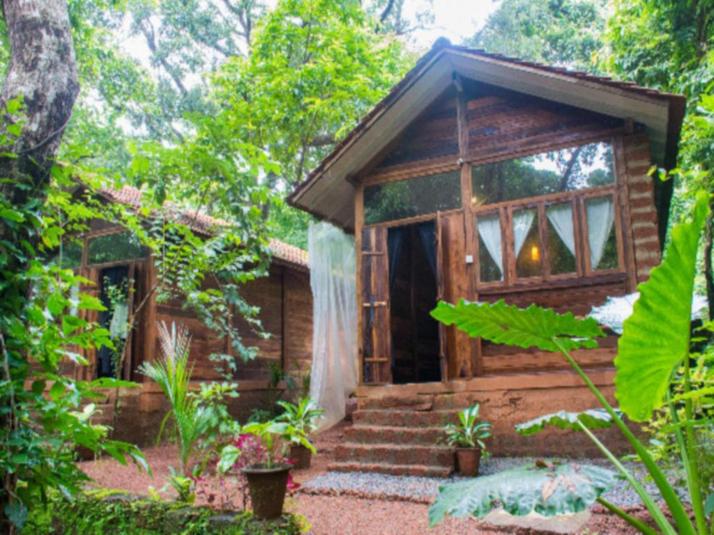 Exterior view Namaste Jungle - Assagao Goa