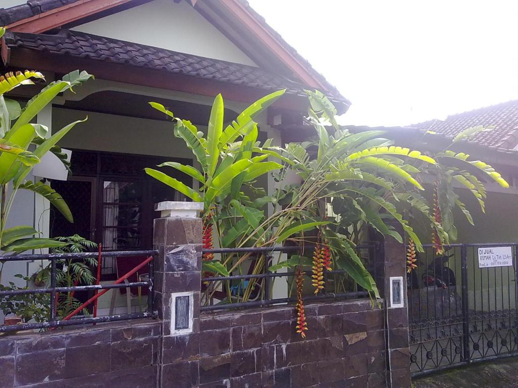 Kevin Home House In Jimbaran Bali