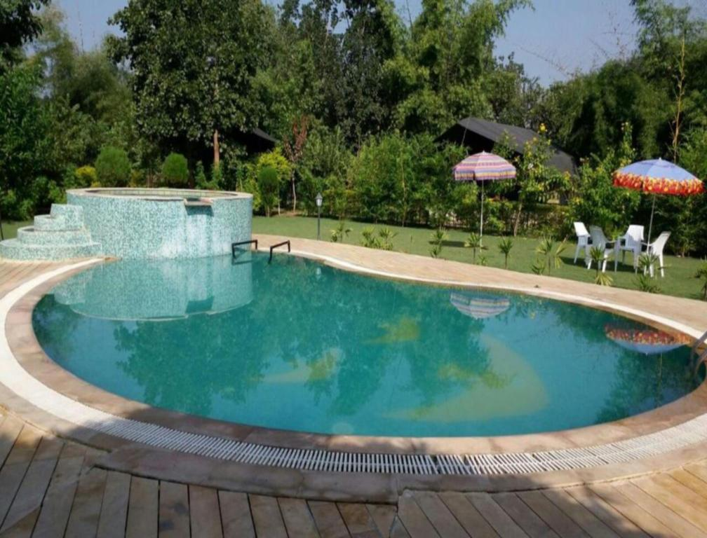 Swimming pool [outdoor] Vraksh Resort