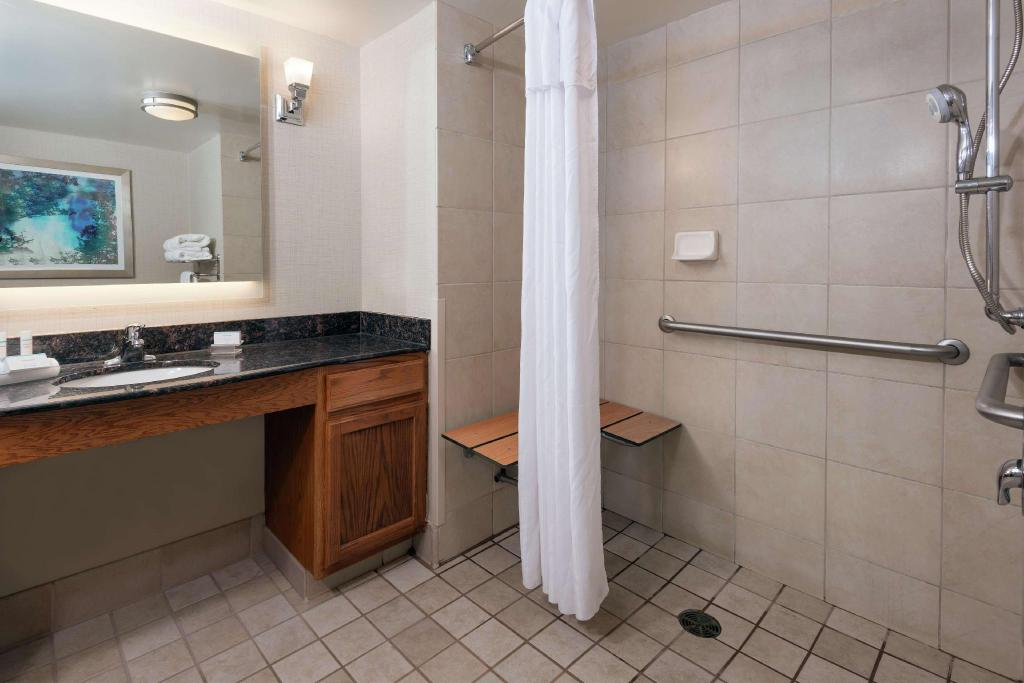 1 King Accessible Roll In Shower Studio Non-Smoking - Guestroom
