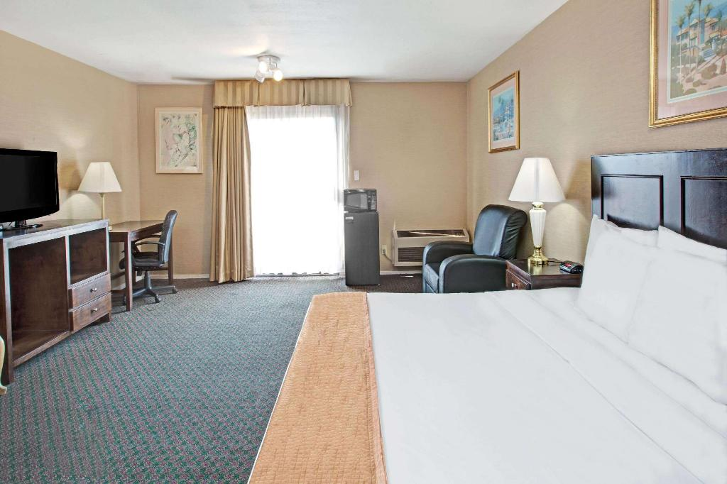 1 King Bed, Mobility Accessible Room, Roll-In Shower, Non-Smoking - Guestroom