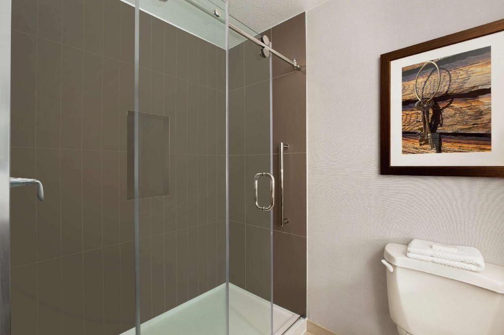 2 Double Suite Accessible Roll In Shower - Guestroom Embassy Suites Dallas Dfw Airport North Outdoor World Hotel