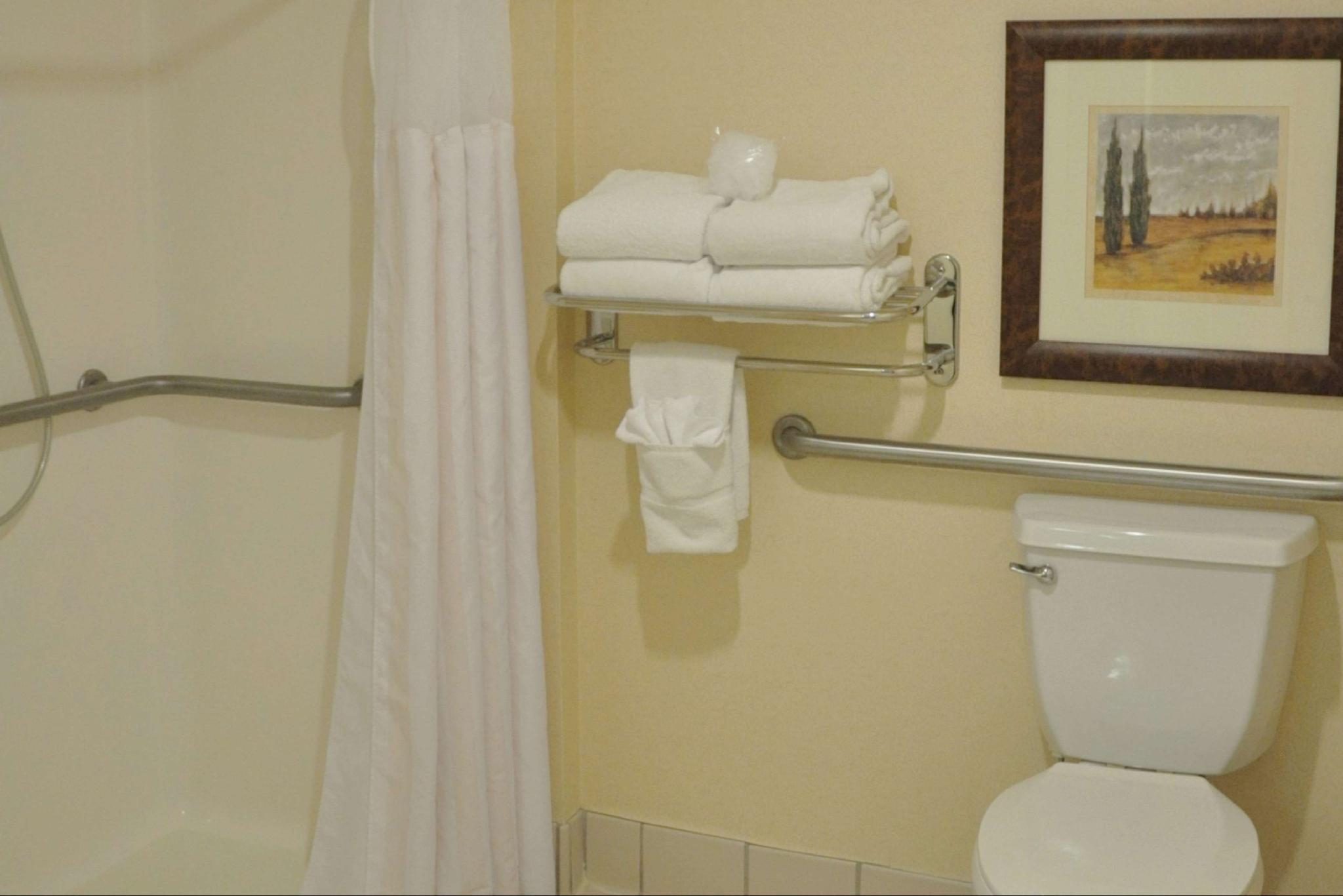 2 Queen Accessible Room Roll In Shower