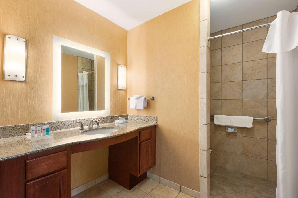 1 King Mobility Hearing Accessible Roll In Shower Studio Non-Smoking - Guestroom Homewood Suites by Hilton Denver Tech Center
