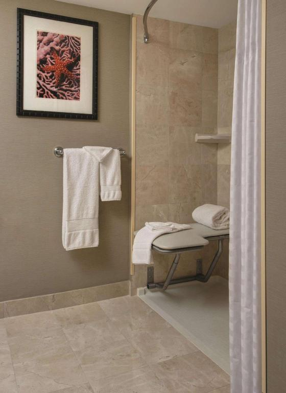 1 King Studio Suite Accessible Roll-in Shower Non-Smoking - Guestroom
