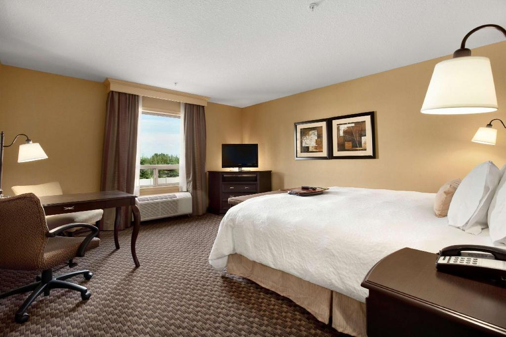 1 King Accessible Non-Smoking - Guestroom