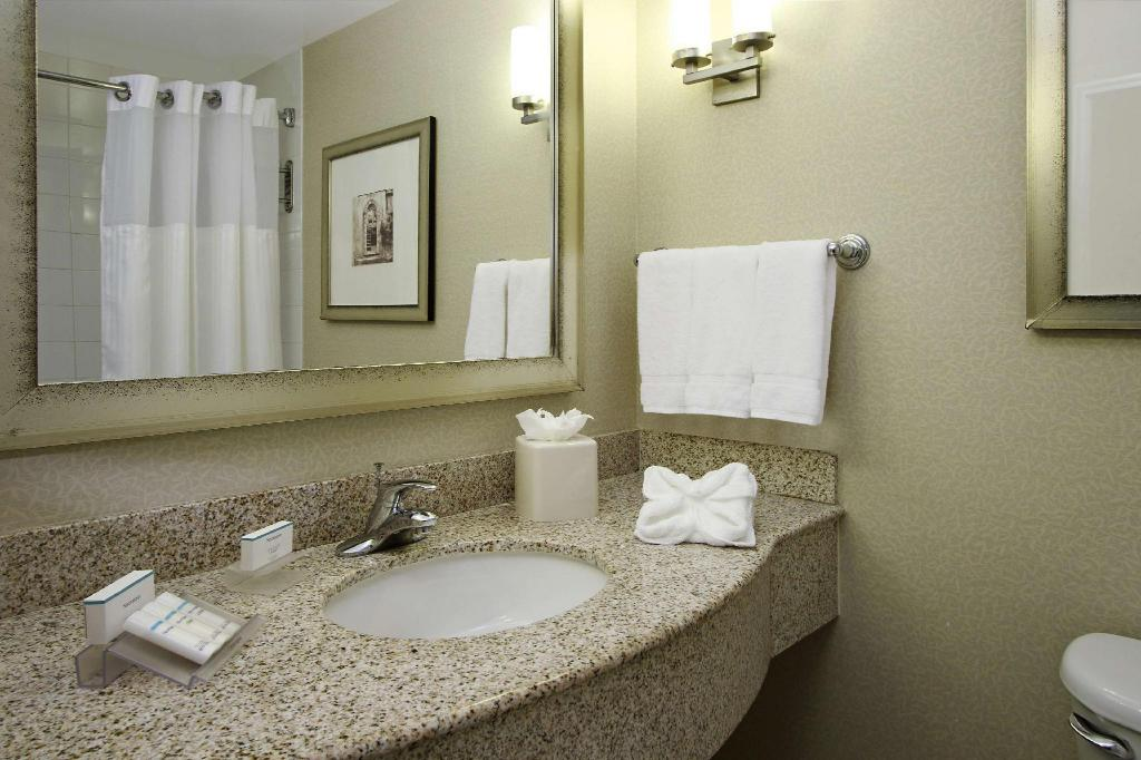 1 King Bed Deluxe - Guestroom Hilton Garden Inn Miami Airport West