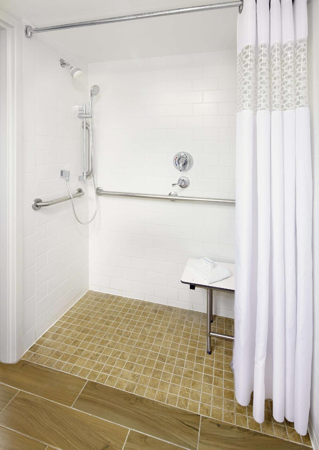 1 King Accessible Roll In Shower Non-Smoking