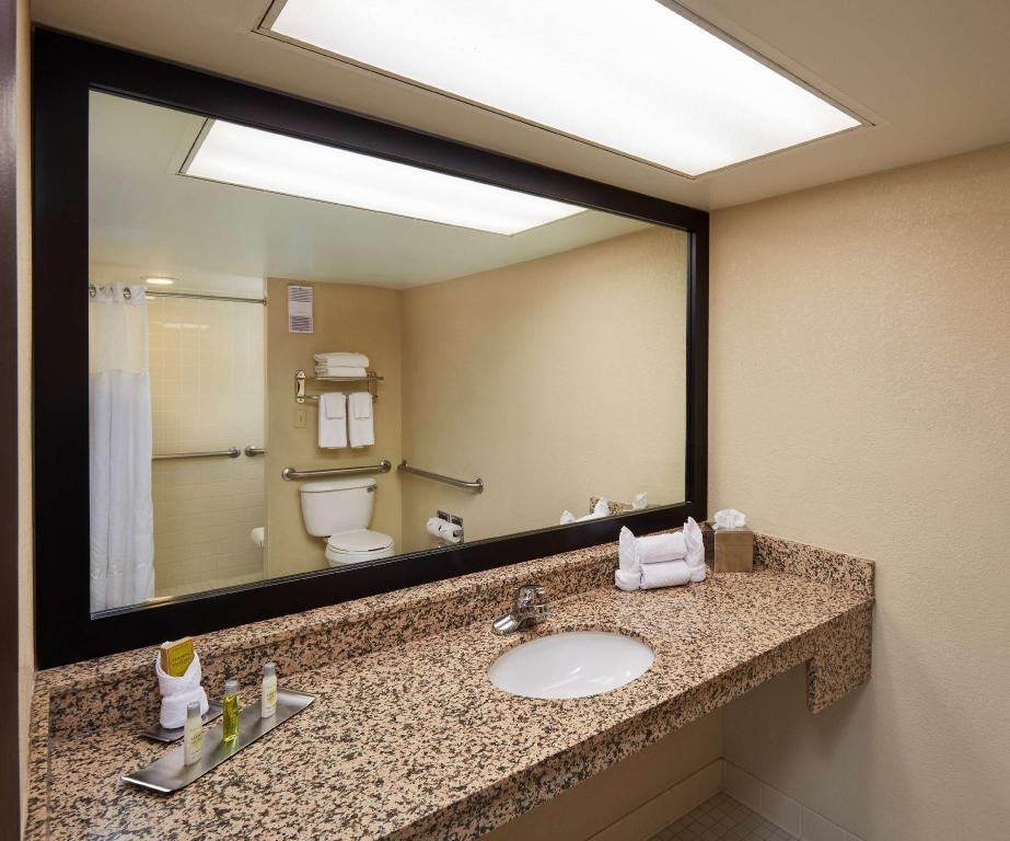 1 King Accessible Roll In Shower Non-Smoking - Guestroom DoubleTree by Hilton Hotel Orlando at SeaWorld