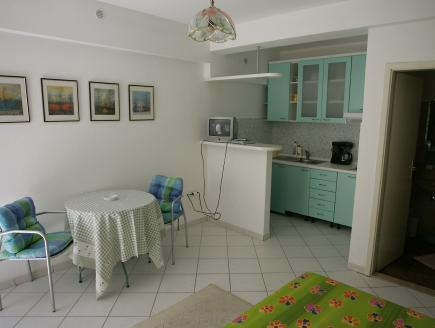 Studio Apartment with Terrace (2 Adults)
