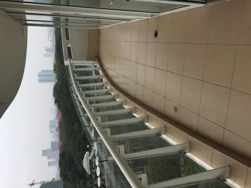 阳台/露台 Deluxe Apartment for Rent (Spring Hills Residence)