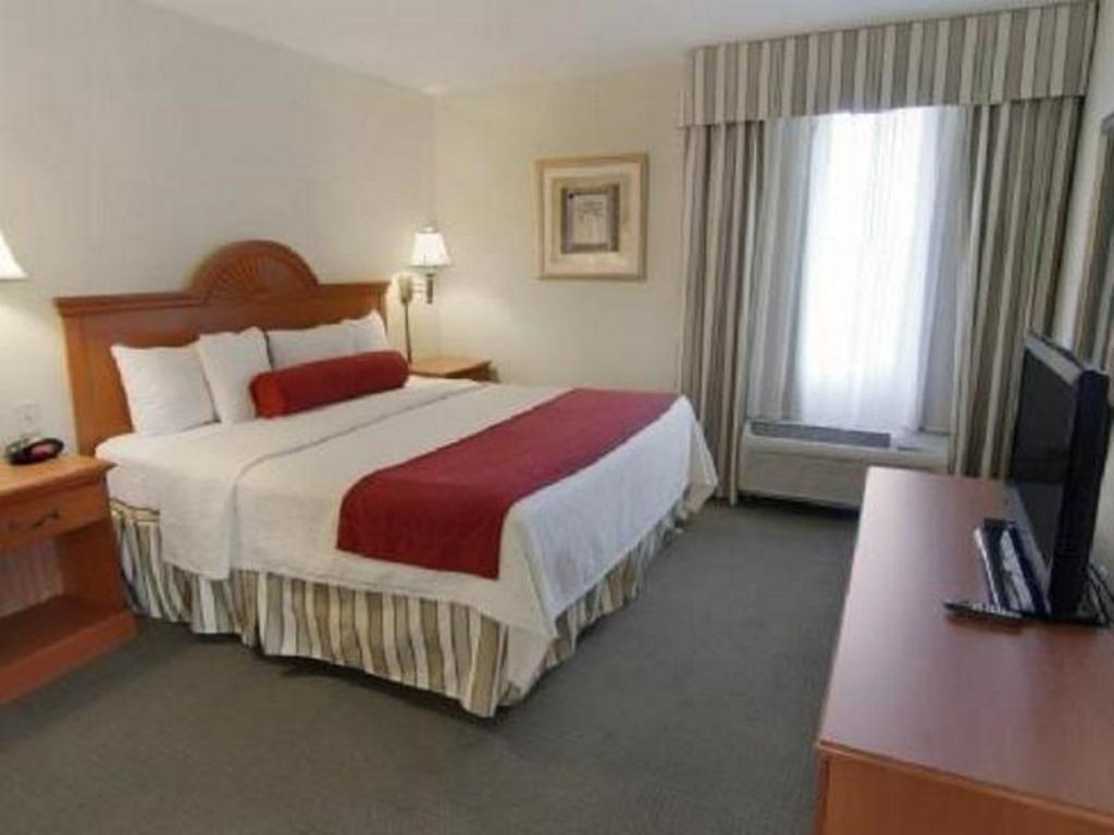 King Bed Best Western Plus Airport Inn and Suites