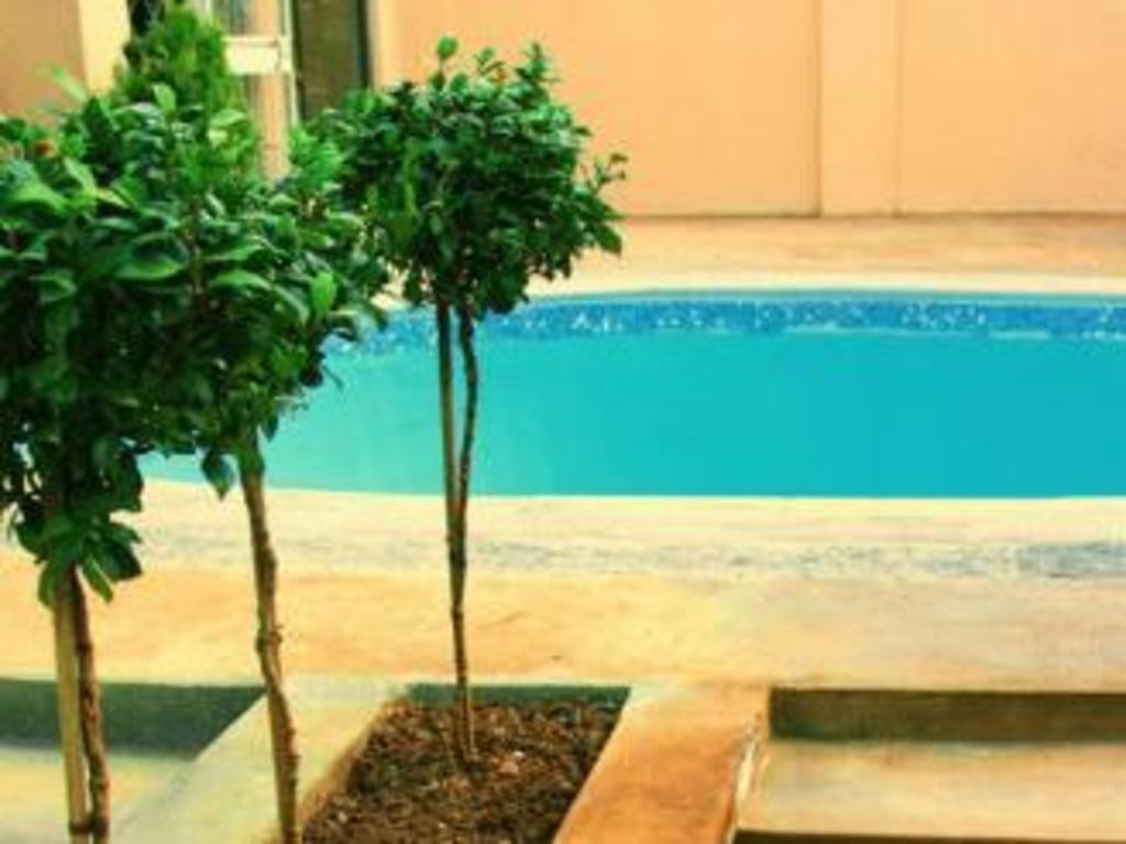 Best price on african lodge in bloemfontein reviews - Stadium swimming pool bloemfontein prices ...