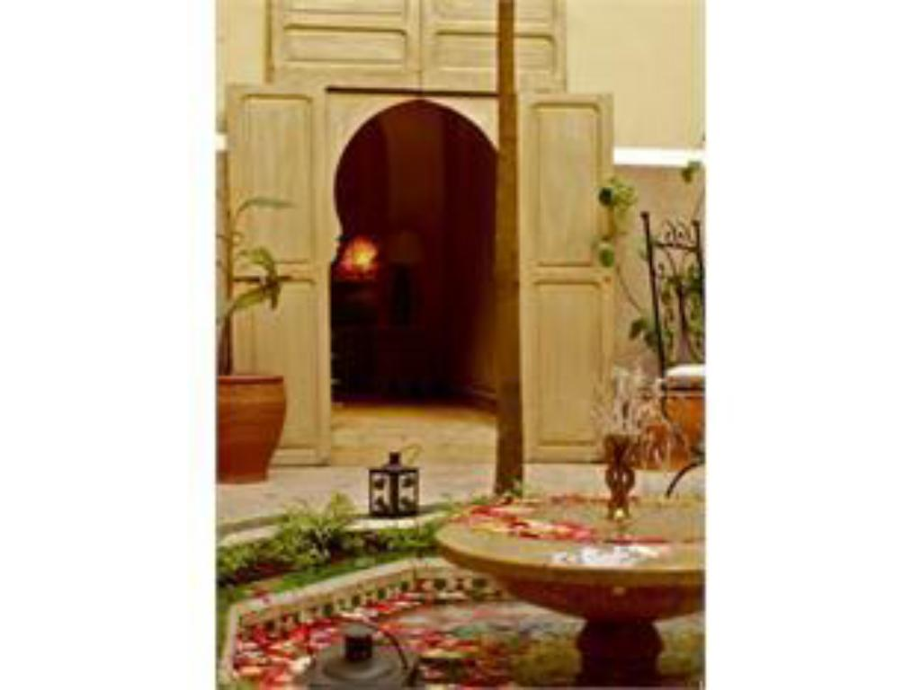 More about Riad Arocha