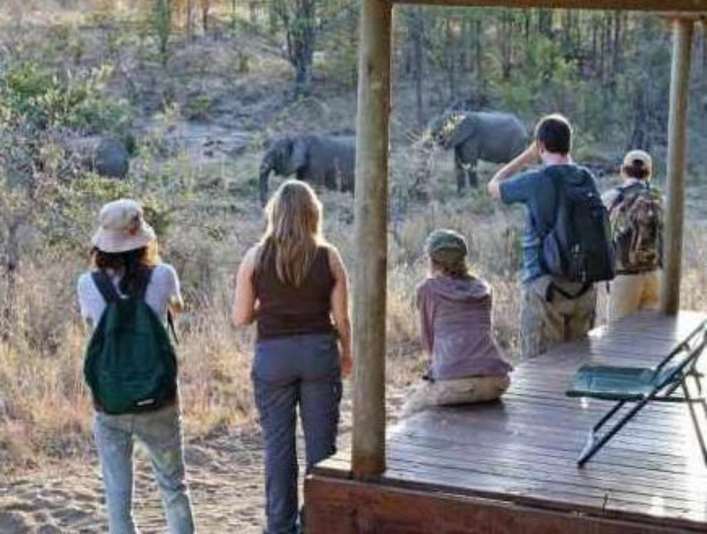 View Shindzela Tented Safari Camp and Walking Safaris Accommodation