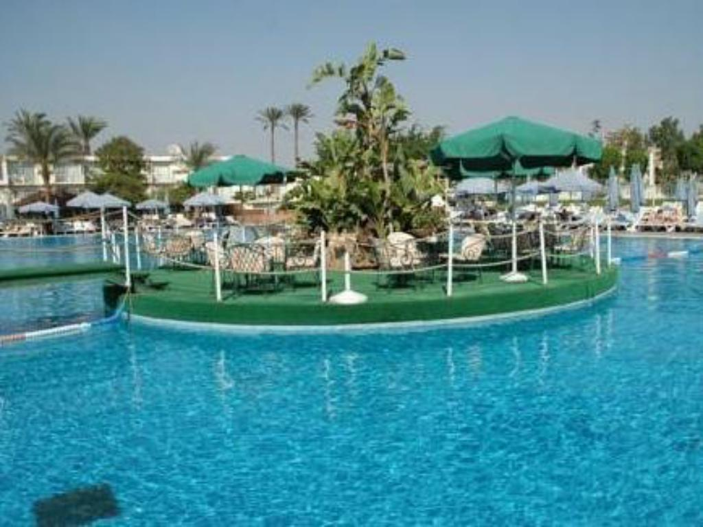 Swimming pool Pyramids Park Resort Cairo (Formerly Intercontinental Pyramids)