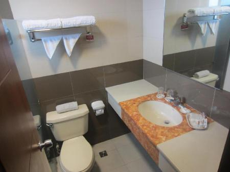 Superior Twin Room Hotel Veniz