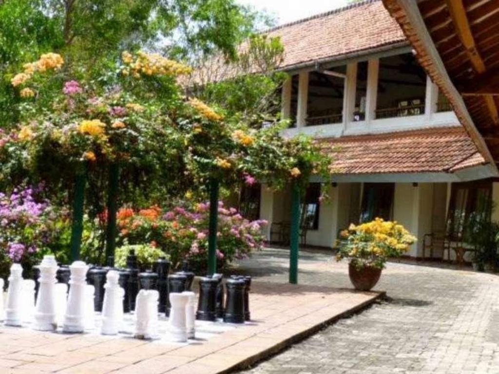 Udayana Kingfisher Eco Lodge Bali Promo Terbaru 2020 Foto Hd Ulasan