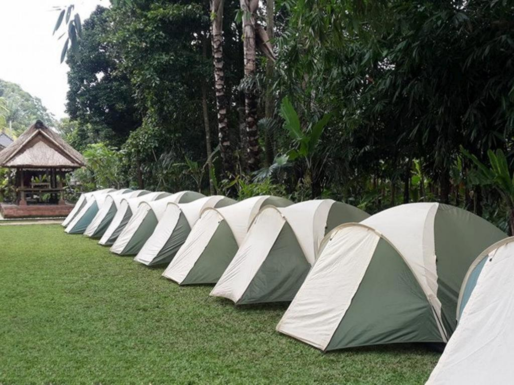 Bali Camping Ubud Camp In Indonesia Room Deals Photos