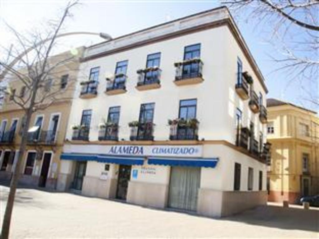 Pensión Alameda Pension Alameda Sevilla Ofertas De último