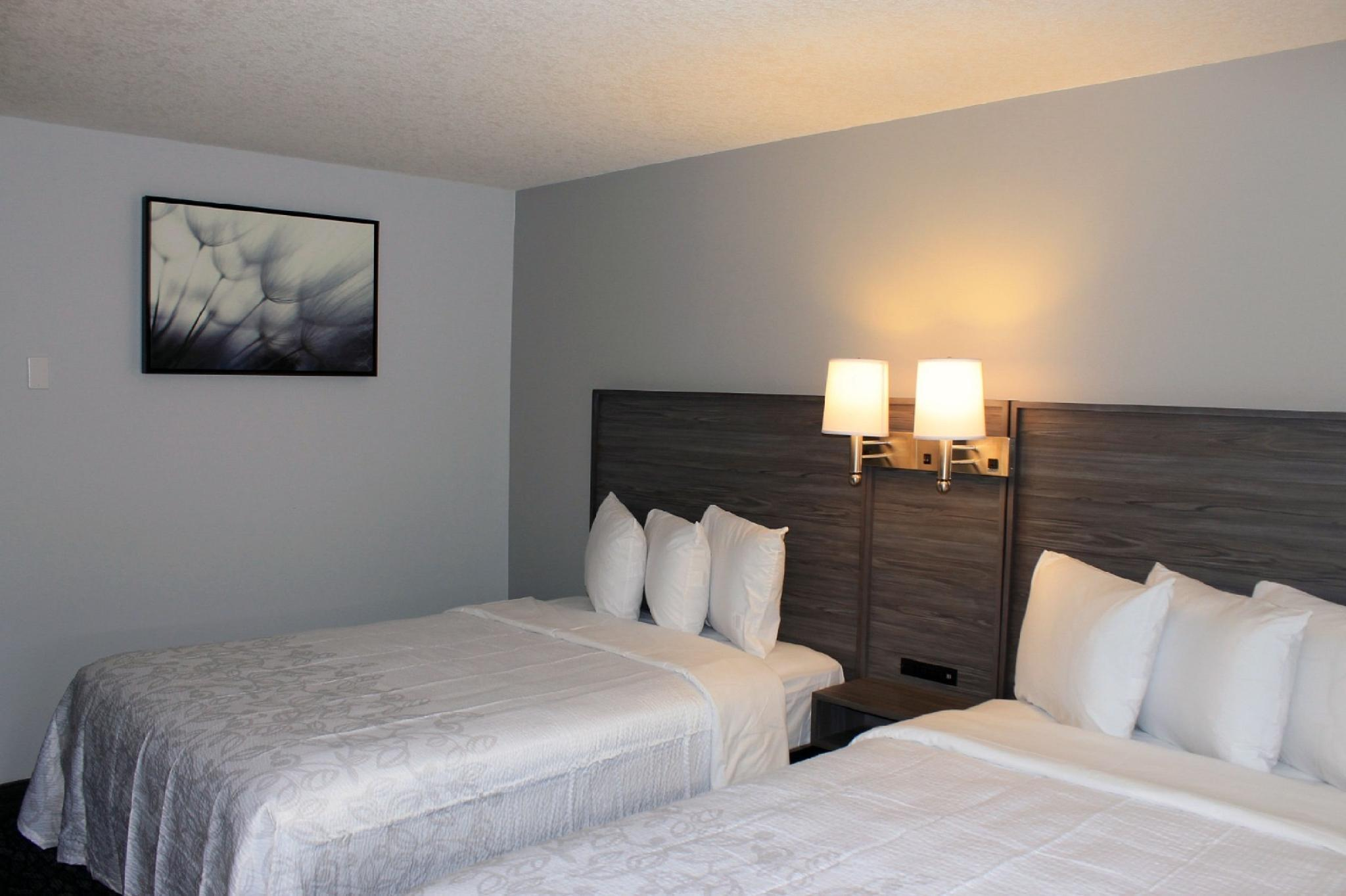 Picture of: Red Roof Plus Suites Calgary Airport Hotel Calgary Ab Deals Photos Reviews