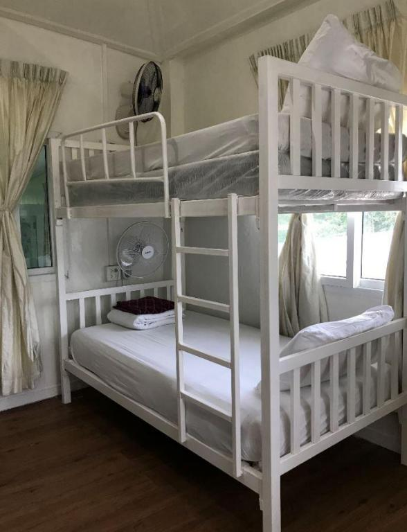 1 Person in 4-Bed Dormitory - Mixed - Guestroom