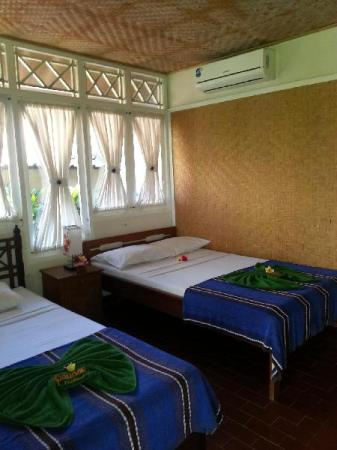 Standard Double atau Twin dengan Kipas Angin Puri Pandan Restaurant and Bungalows