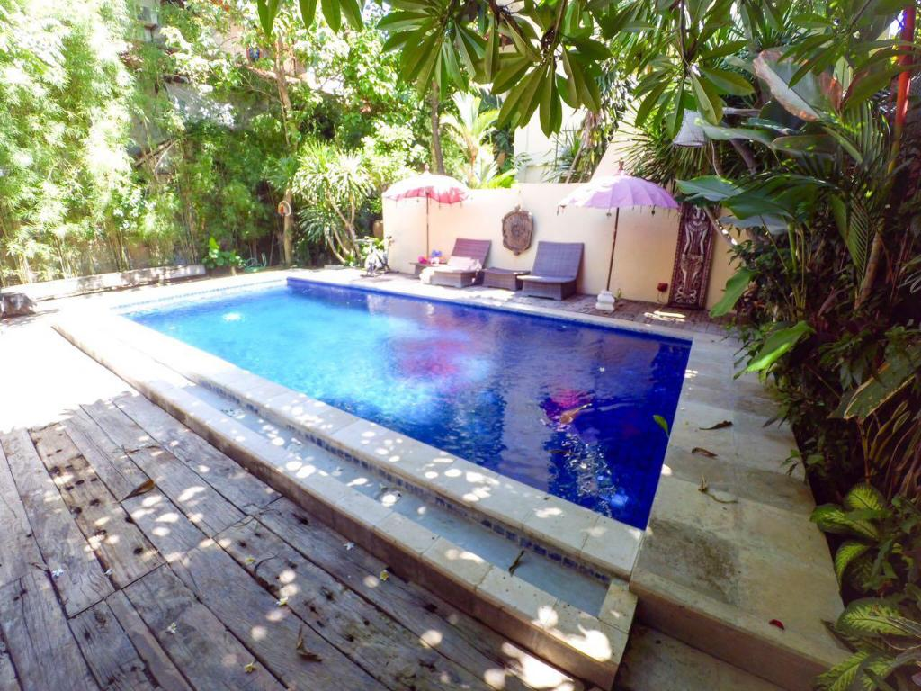 Swimming pool [outdoor] Soputan Wooden House 2