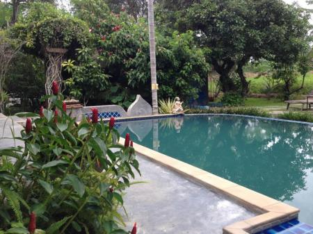 Swimming pool [outdoor] Pai Chan Cottage & Cuisine