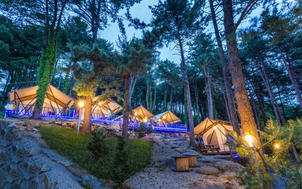Lihat semuanya (30 foto) Antibes Pension - Glamping and 102 Nancy