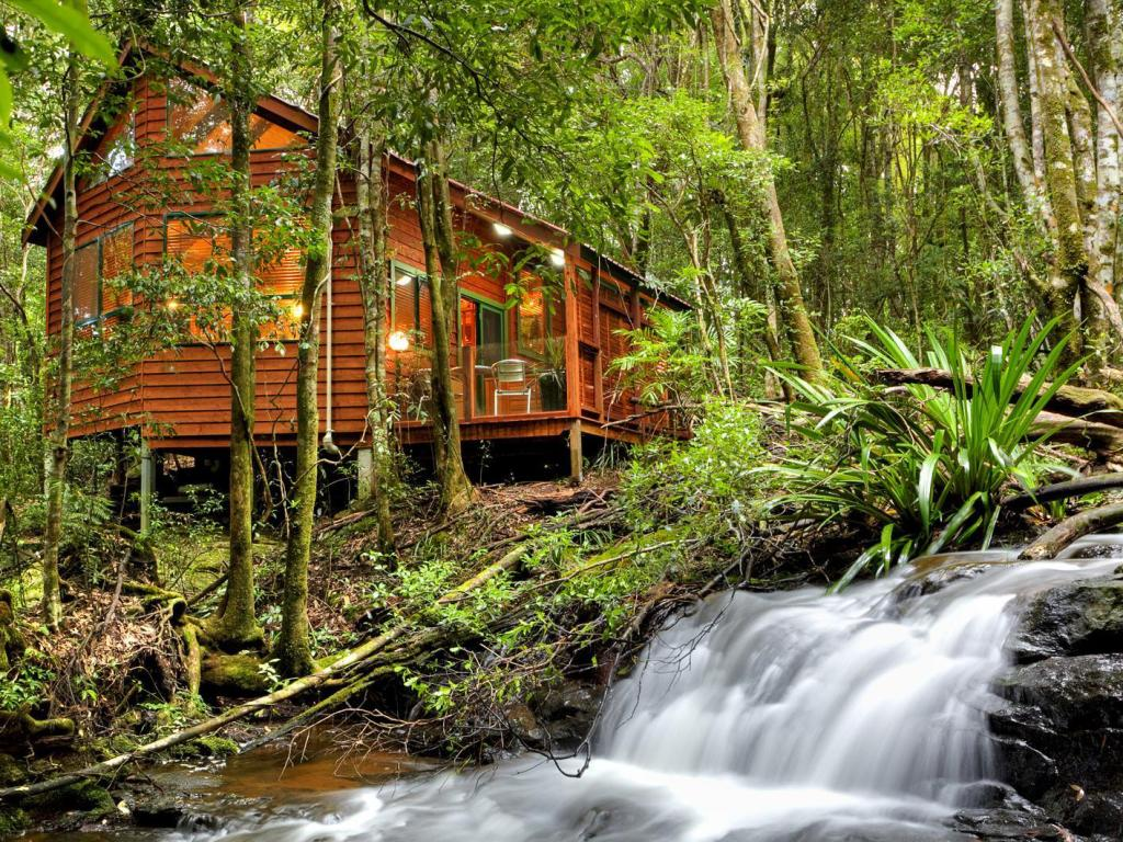 ذا ماوسيس هاوس راينفوريست ريتريت (The Mouses House Rainforest Retreat)