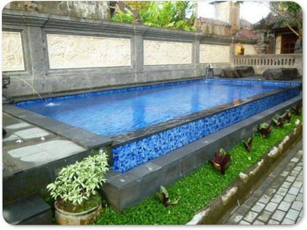 Swimming pool Warji House 2