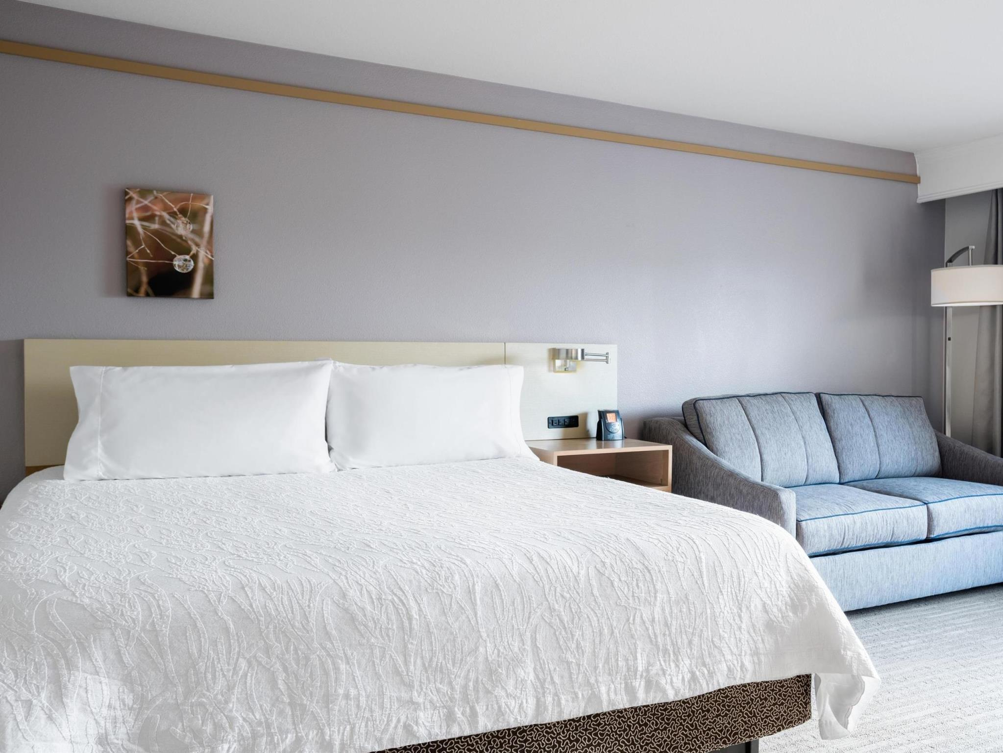 1 King Bed   Guestroom Hilton Garden Inn Irvine East Lake Forest