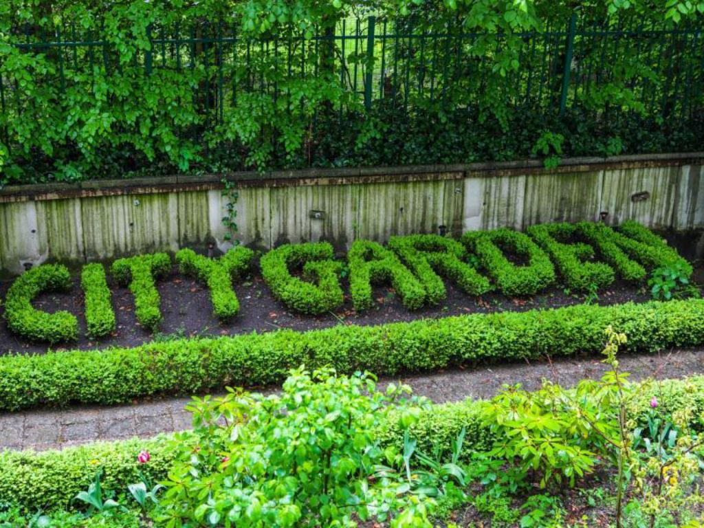 more about hotel city garden amsterdam - City Garden