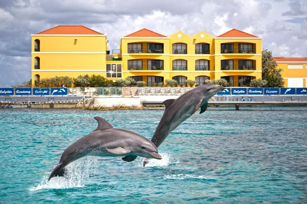 More about The Royal Sea Aquarium Resort