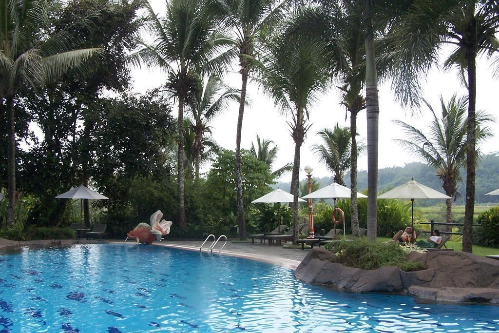 Swimming pool [outdoor] Hotel Puri Asri