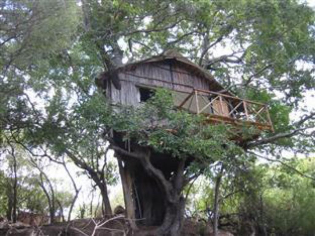 Marcs Treehouse Lodge