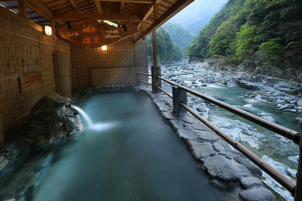 More about Wanoyado Hotel Iya Onsen Natural Hot Spring