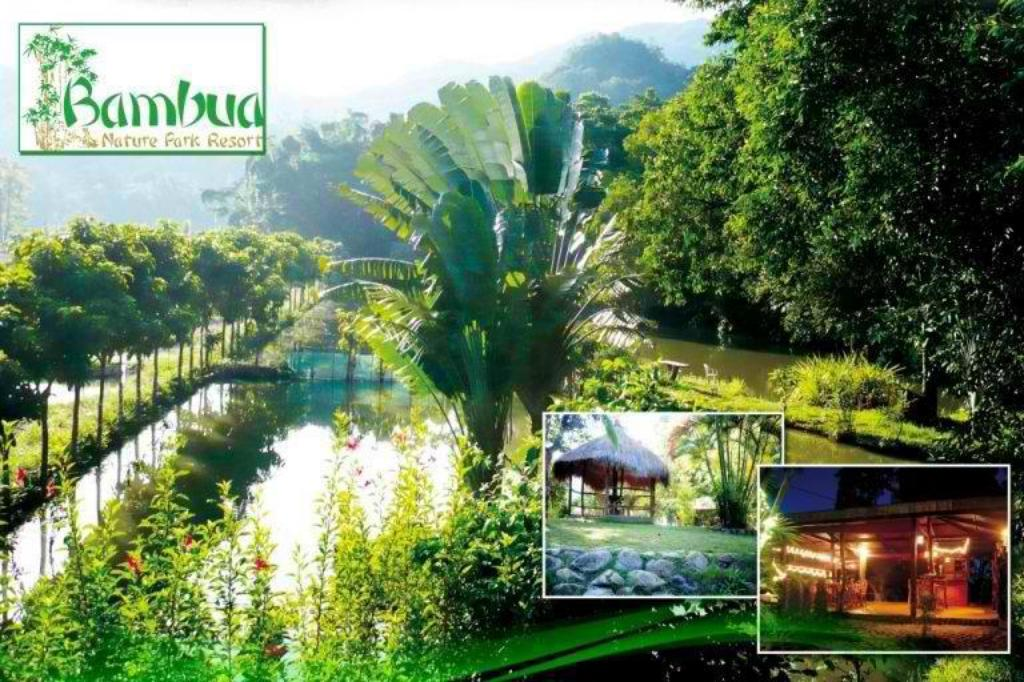 Bambua Nature Cottages and Hostel