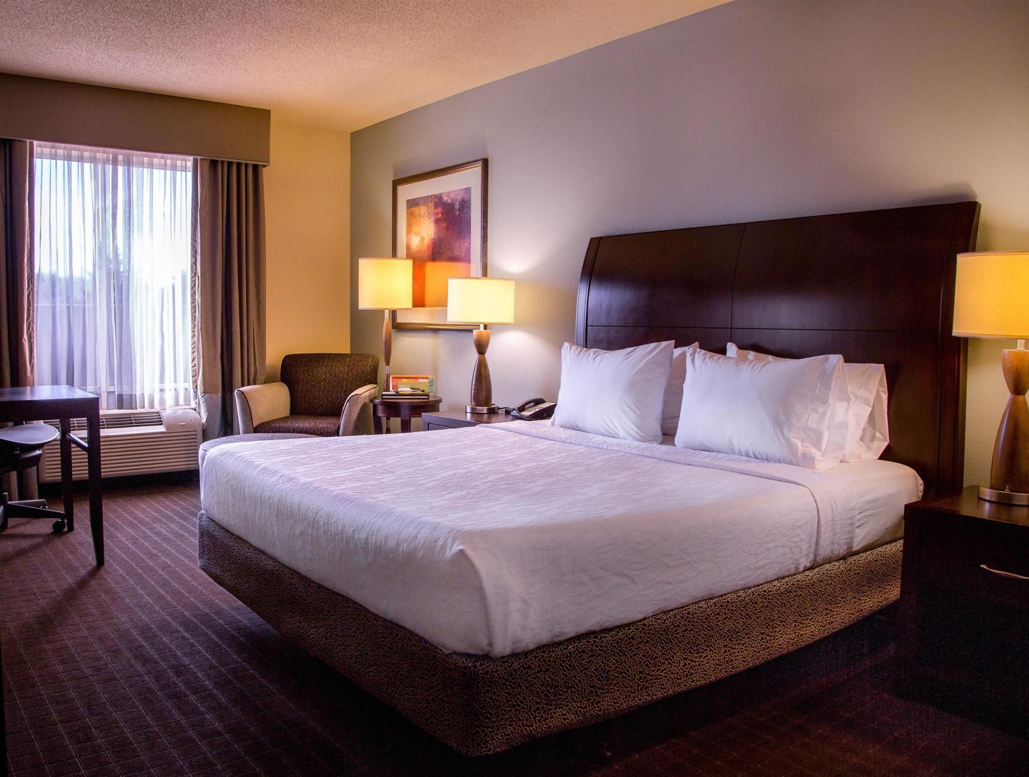 1 king accessible roll in shower - Hilton Garden Inn Lynchburg Va
