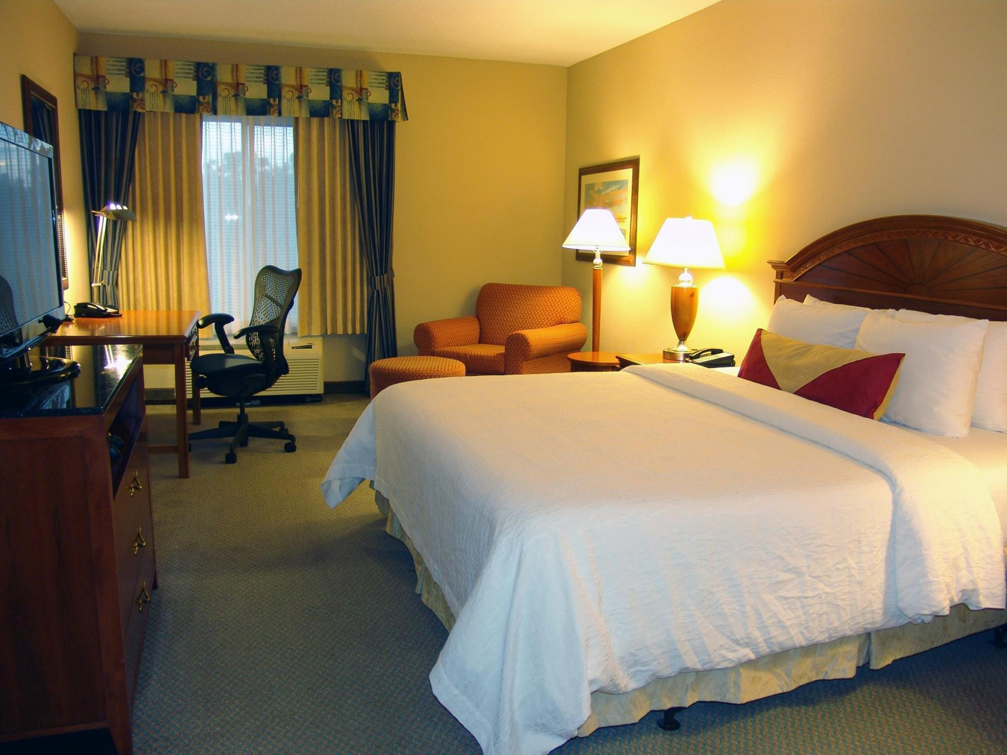 1 King Bed   Guestroom Hilton Garden Inn Mobile East Bay Daphne