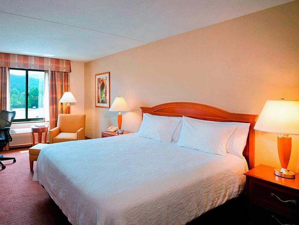 Captivating 1 King Bed   Guestroom Hilton Garden Inn Poughkeepsie Fishkill Images