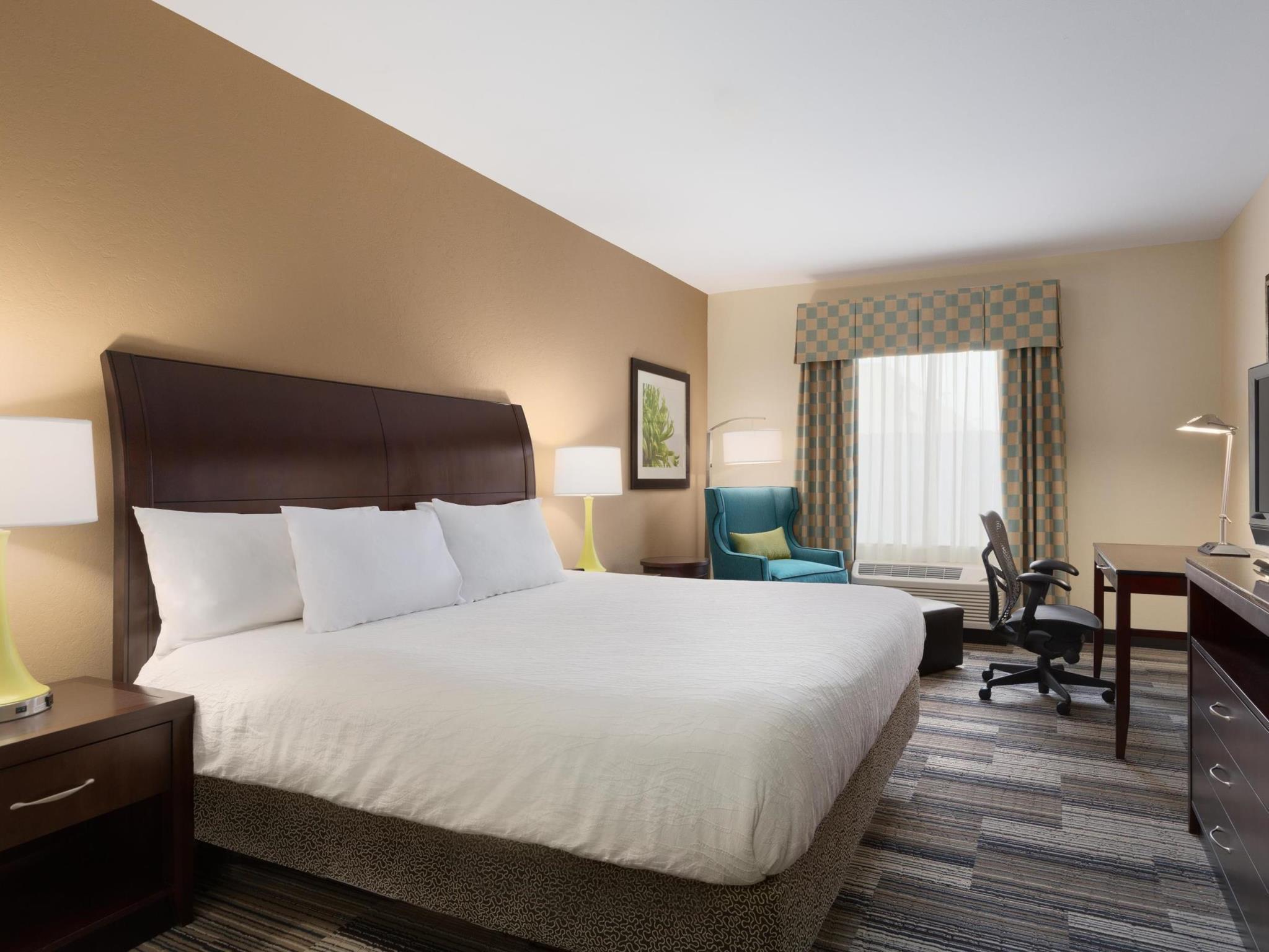 1 King Bed Shower   Guestroom Hilton Garden Inn Abilene